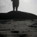 beach_seal_02.jpg